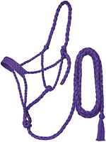 Tough 1 Western Horse Mule Tape Halter with 10 ft Lead Rope Purple Horse Tack