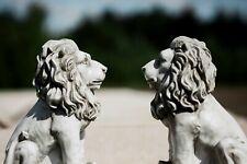 Classic Resin Lion Garden Ornaments 2pc Lawn Stone Effect Sculptures Antique