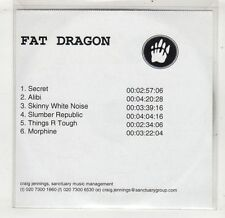 (GV95) Fat Dragon, 6 track sampler - DJ CD