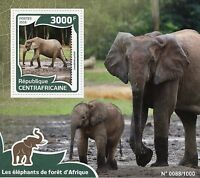 Central African Republic 2016 MNH African Forest Elephants 1v S/S Wild Animals