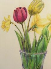 colored pencil drawing mixed tulip flowers
