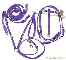 D.A. Brand Purple  Nylon w/ Braided Rawhide Trim Draft Bridle Set Horse Tack