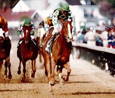 DVD 1980-1991 34 TRIPLE CROWN RACES GENUINE RISK WINNING COLORS RISEN STAR