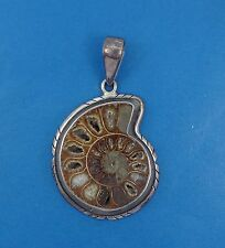 AMAZING LARGE CHARLES ALBERT AMMONITE STERLING FRAME PENDANT