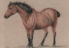 SUPERB OLD MASTER HORSE STUDY Chalk Drawing 1815 WARD