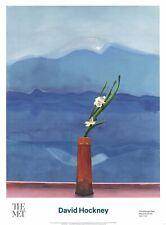 DAVID HOCKNEY Mount Fuji and Flowers 34 x 25 Poster 2016 Pop Art Blue, Red
