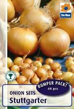 Stuttgarter Onions Bulbs Garden Growing Vegetables