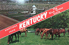 Vintage Postcard of Greetings from Kentucky, circa 1986
