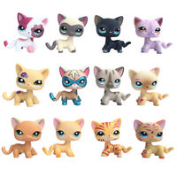 Littlest Petshop persian chat EUROPEEN LPS short hair cat KITTEN lot