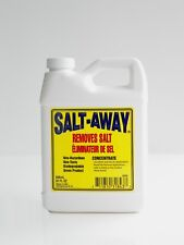 SALT-AWAY 946 ml CONCENTRATE