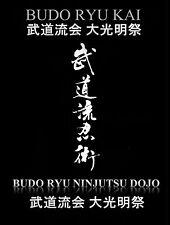 Budo Ryu Kai Taikai DVD #13 - 2011 Shinobi Stealth Camp - Ninja, Ninjutsu, Ninpo