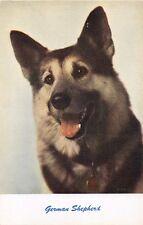 German Shepherd Dog Standard Arts #84 Postcard 1950s