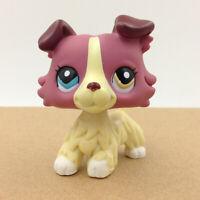 LPS #1262 Littlest Pet Shop Hair Cream Collie Dog Brown Puppy Collection Kid Toy