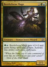 4x beetleform mage | NM/M | Dragon 's Maze | Magic MTG