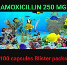 Aquarium fish Antibiotics A moxicillin 250 mg 100 capsule