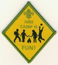 Cubs Camp is Fun Scouts Badge
