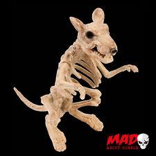 Esqueleto Tamaño Real De Rata figura-al aire libre/Interior Decoración De Halloween PROPULSOR miedo
