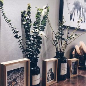 New Bouquet Dried Natural Eucalyptus Branches Leaves Arrangement Flower