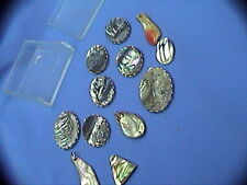 """box of abalone pieces jewelry findings are. pre-drilled or with hangers up to 1"""""""