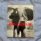 Peter Beard Photo book THE LAST WORD FROM THE PARADISE 1979 1st. edition Used
