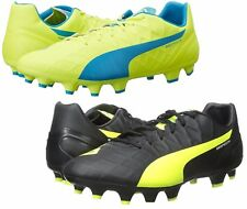 PUMA Men's Evospeed 4.4FG Soccer Shoe