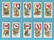 BOY SCOUTS  -  PLAYERS  -  SET OF 50 BOY SCOUT & GIRL GUIDE CARDS  -  1933