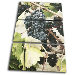 Grapes Garden Nature Food Kitchen TREBLE CANVAS WALL ART Picture Print