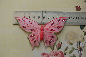 PINK & GreenEdgeFeather BUTTERFLY 11x8cm with 2.5cm Squeeze Clip-Touch Of Nature