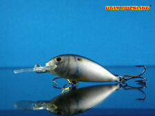 UGLY DUCKLING Fishing Lure Hand Made,Balsa Wood, Shad floater, rare and unique