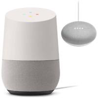 Google Home Mini Chalk with Google Home White