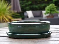 Bonsai Pot & Tray. 15 cm Dark Green Oval Glazed Bonsai Pot & Tray