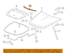 Cadillac GM OEM 09-15 CTS Hood-Front Molding Trim 20897985