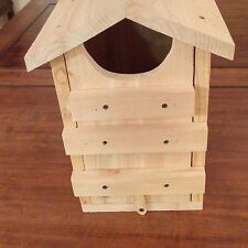 Screech Owl House - Pine