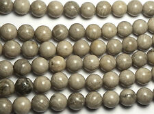 "15"" Strand ""Petoskey"" FOSSIL CORAL 10mm Round Beads"