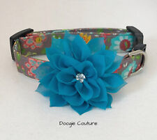 Brand New Fall Greetings Dog Collar Size XS through Large by Doogie Couture Pet