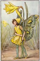 The Daffodil Fairy : Cicely Mary Barker : c 1918 : Archival Quality Art Print