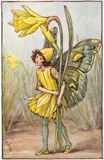 The Daffodil Fairy : Cicely Mary Barker : circa 1918 : Art Print