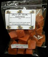 AUTUMN HARVEST Scented Tart Wax Melts Chunks Chips Home Candle Warmer Scents