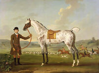 Art oil painting young man with Spotted horse and hounds dogs in field on canvas