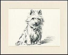 CUTE CAIRN TERRIER CHARMING LUCY DAWSON DOG ART PRINT READY MOUNTED