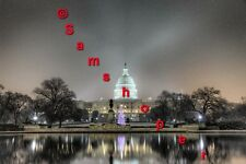 "2013 U.S. Washington DC Capitol Christmas Tree Snow Day Photo Print 20"" x 30"""