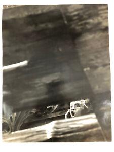 """FINE ART PHOTO Ben Korngold B&W under the Angel speaking Photo14""""x11"""""""
