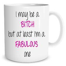 Funny Novelty Bitch Mug Fabulous Adult Humour Explicit Joke Cups WSDMUG677