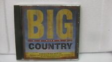 BIG COUNTRY HITS (RARE) 2005                                  CD382