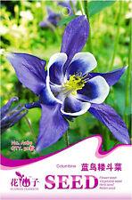 Original Package 50 Blue Columbine Seeds Aquilegia Vulgaris Flowers A189