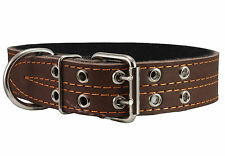 "Genuine Leather Dog Collar Padded 1.5"" Wide 18""-22"" Neck Mastiff Rottweiler"