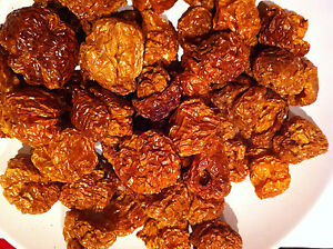 Smoked Yellow Trinidad Moruga Scorpion Dried Pods - The Hot Pepper Company
