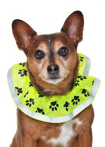Dog safety hi-visibility decorative collar Size S New in Bag - Made in the USA