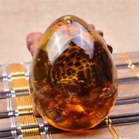 Natural Resin Amber Butterfly Insect Stone Pendant Necklace Crystal Quartz Gifts