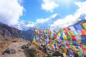 Packs - Tibetan Buddhist Prayer Flags Wind Horses - Made In Nepal